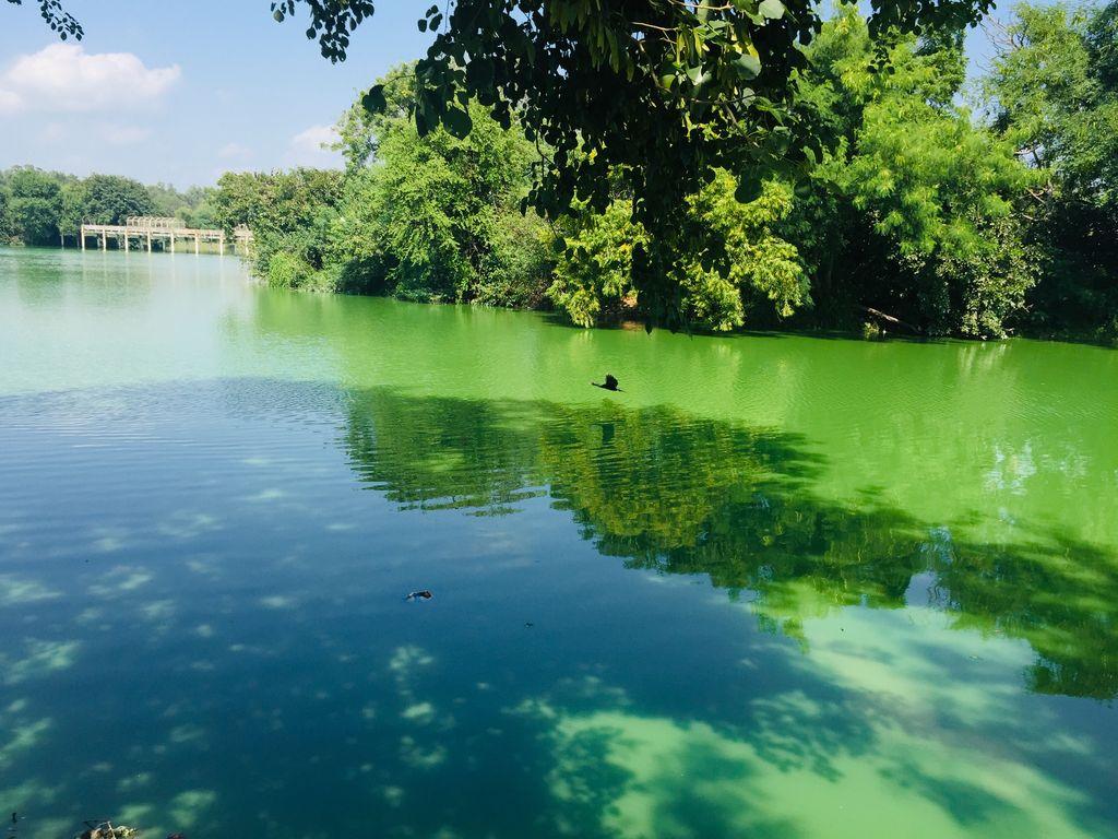 Tilyar Lake, India