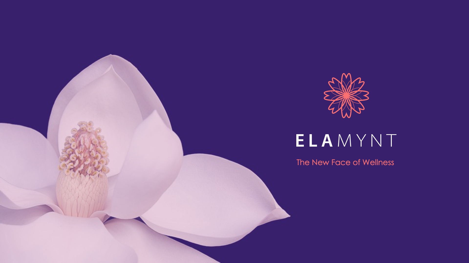 Slide Design Sample: Cover with company logo on right and lotus flower on left