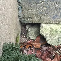 RI Block Rodent Entry