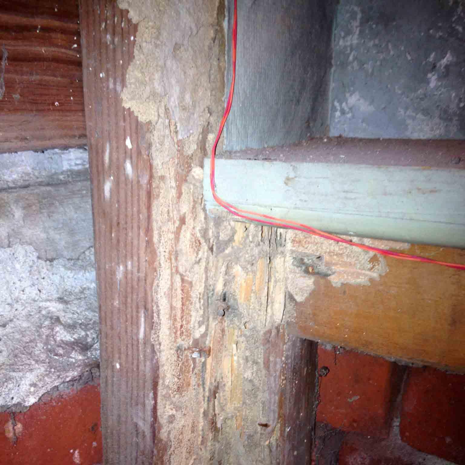 wood damaged
