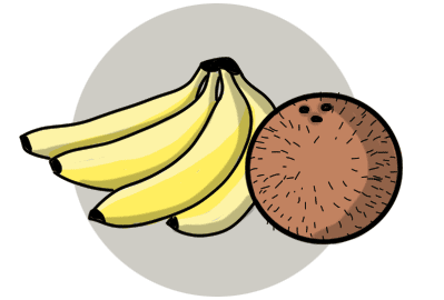 Bananas and a coconut