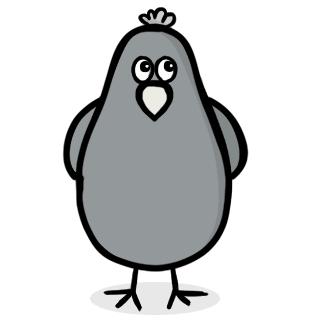 A coy bird