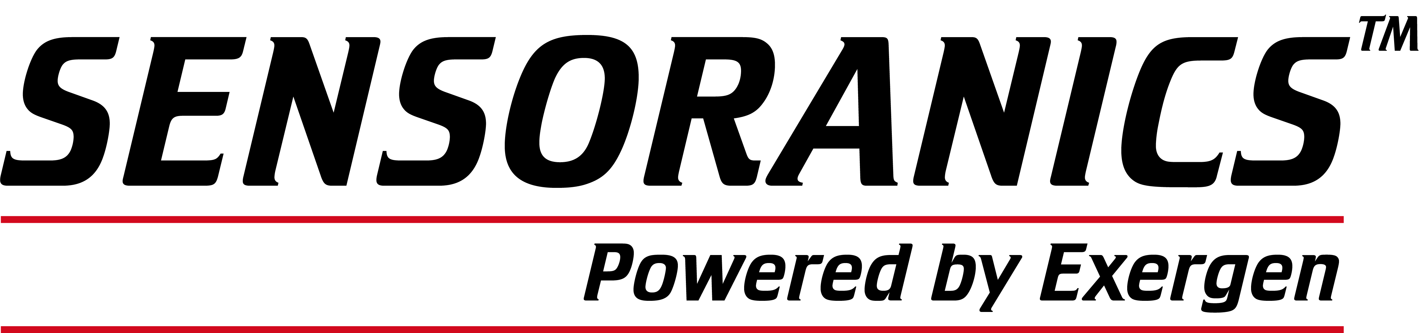 Exergen Global Logo