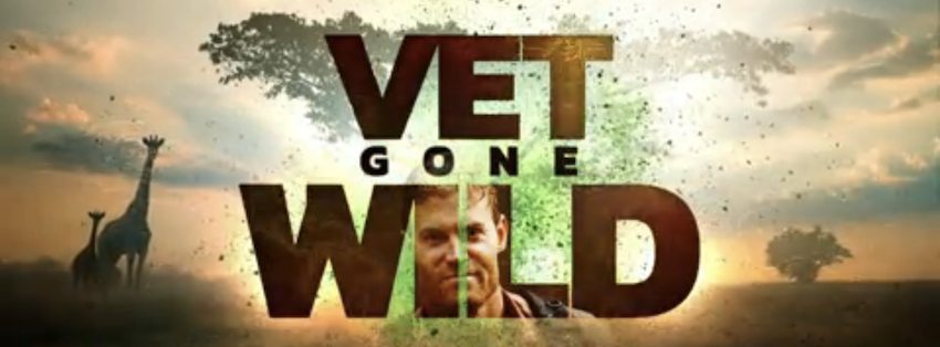 Vet Gone Wild National Geographic Animal Planet