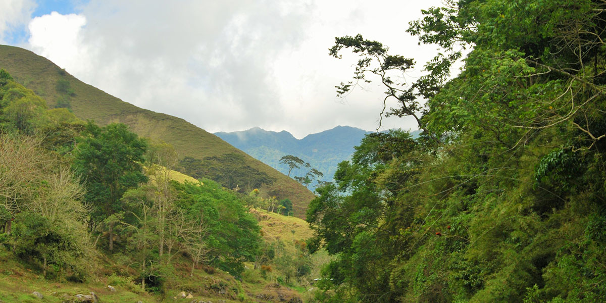 San Gerardo, Rivas