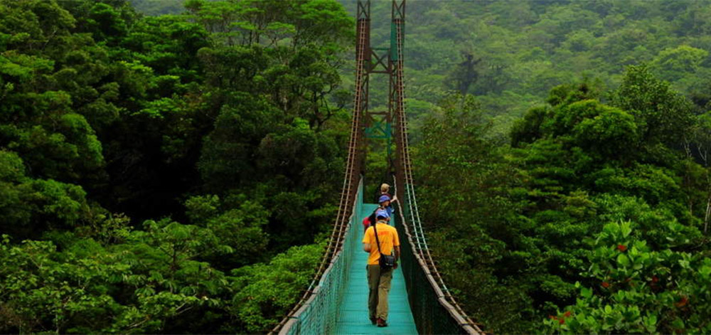 a picture of hanging bridges in monteverde, costa rica