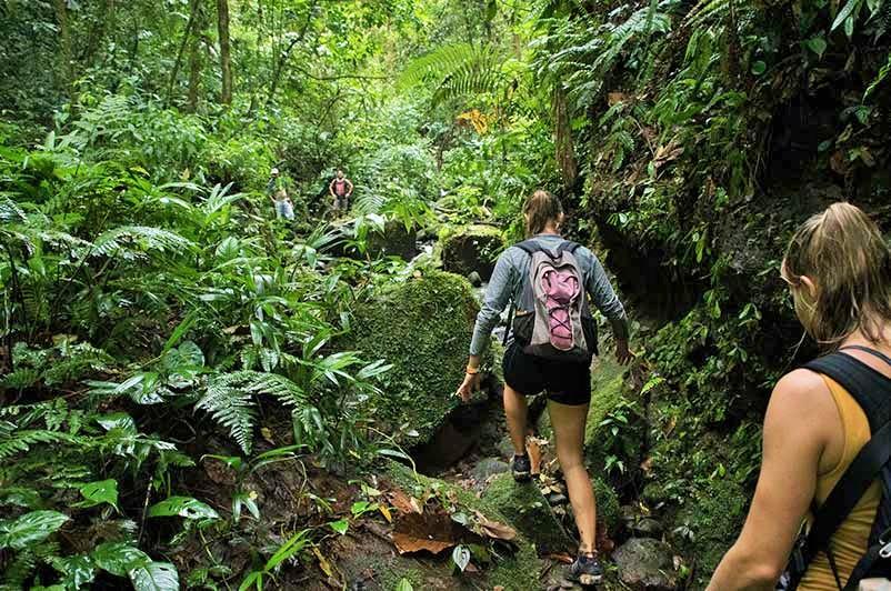 Trekking Ruta Sukia Costa Rica