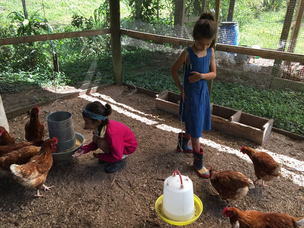 Farm time at Monte Claro