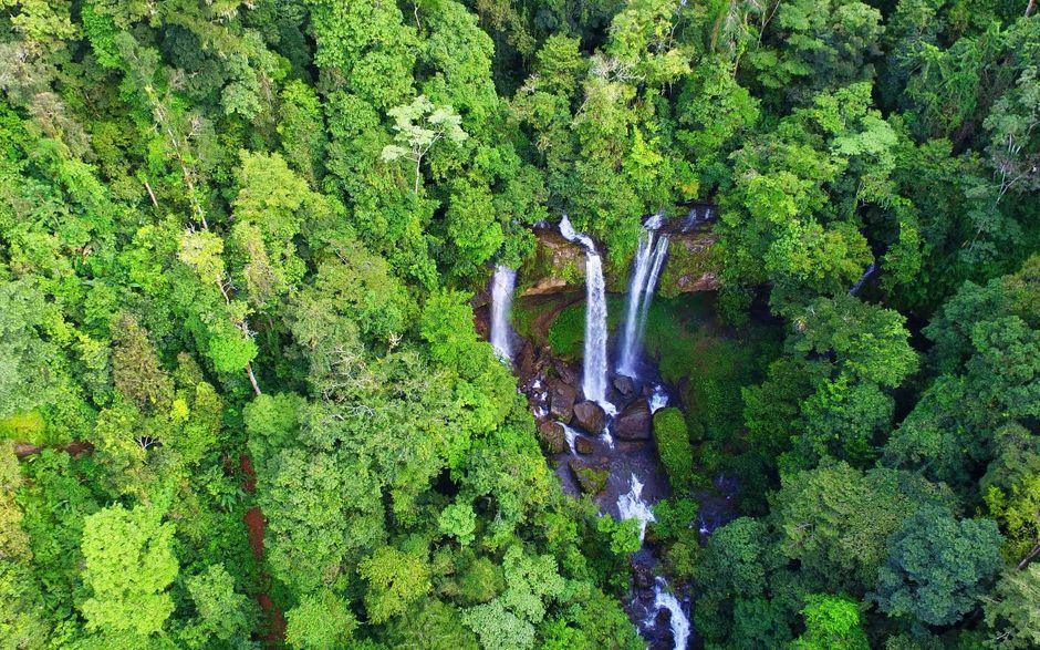 foto de la catarata diamante en Costa Rica dentro de un denso bosque