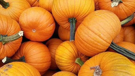 The Many Health Benefits of Pumpkin