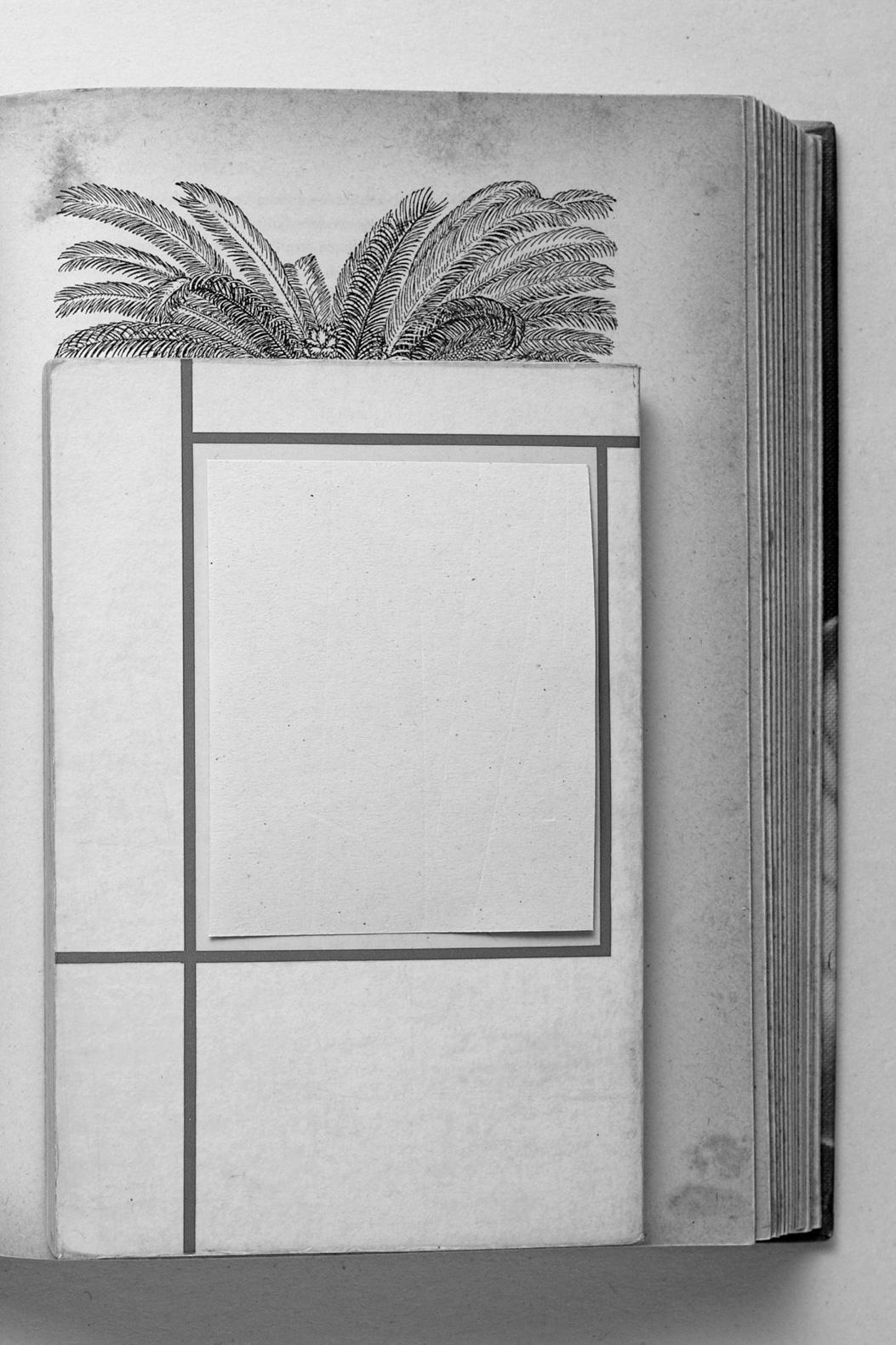 Rometti Costales, Ediciones del Exotismo (extract). Tenderpixel.