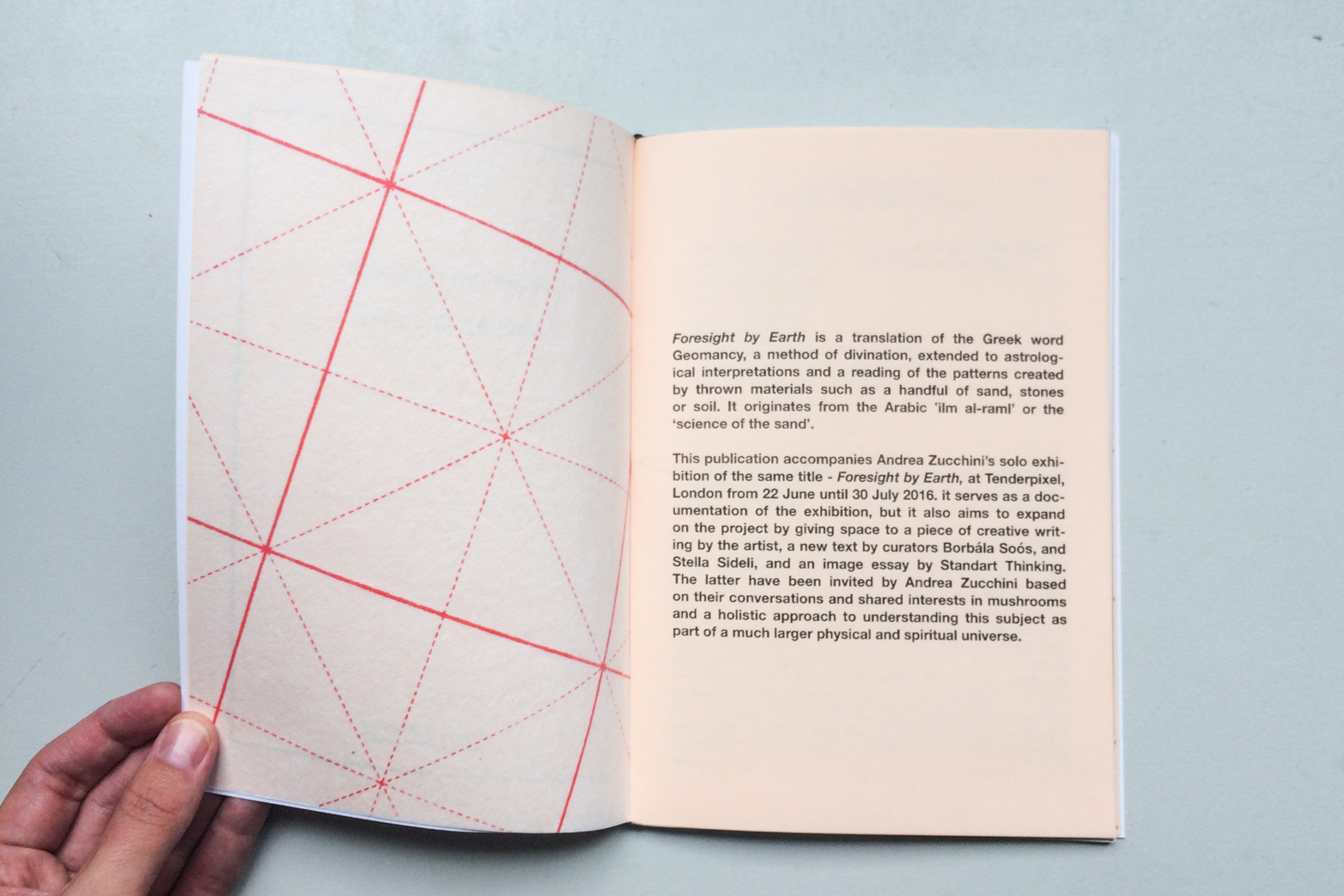 Foresight by Earth, publication, produced by Tenderpixel in 2016, on the occasion of Andrea Zucchini's solo show by the same title. Designed by Rowena Harris.