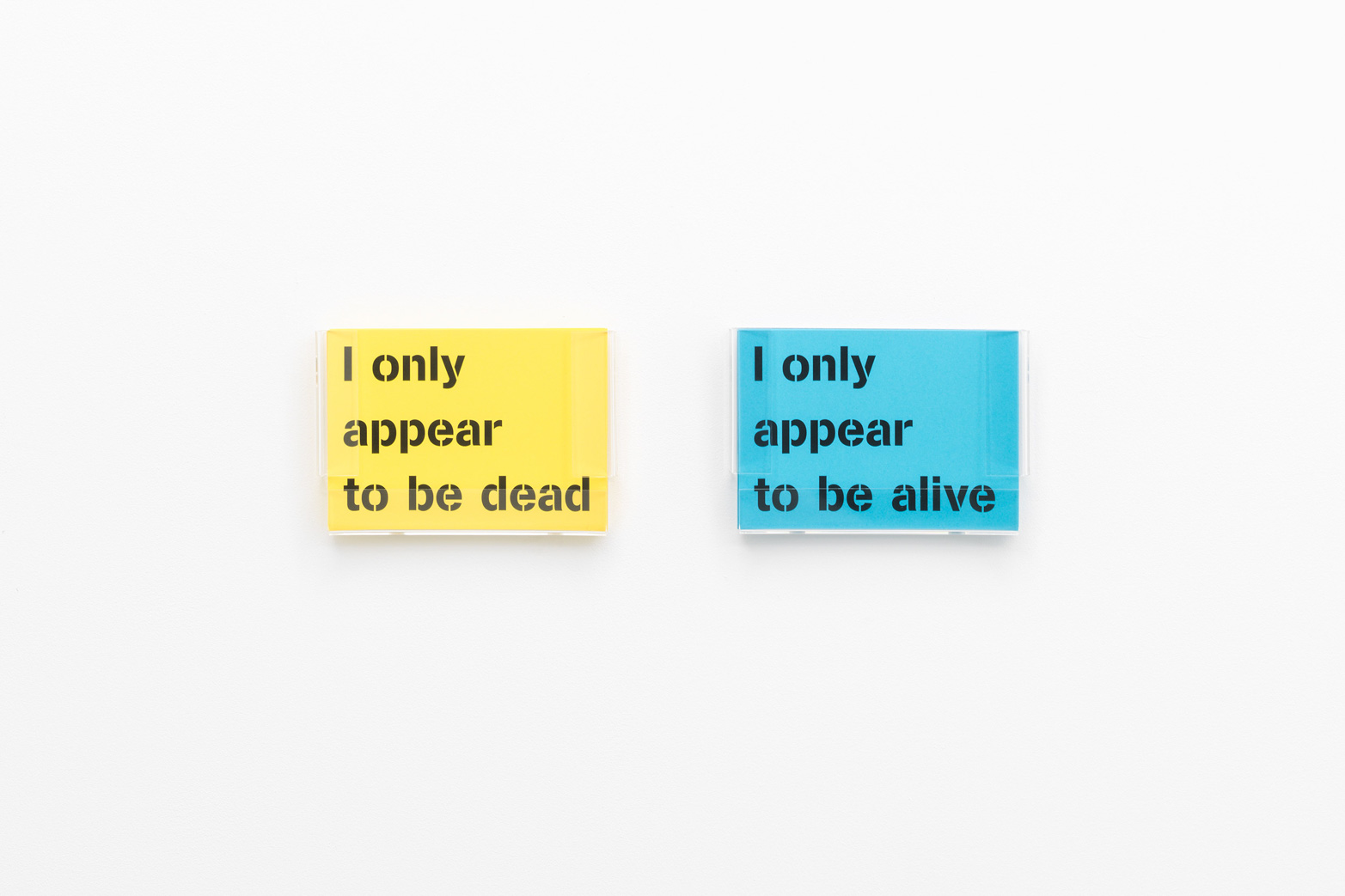 Ian Whittlesea,  I only appear to be alive / I only appear to be dead, 2009. Tenderpixel.