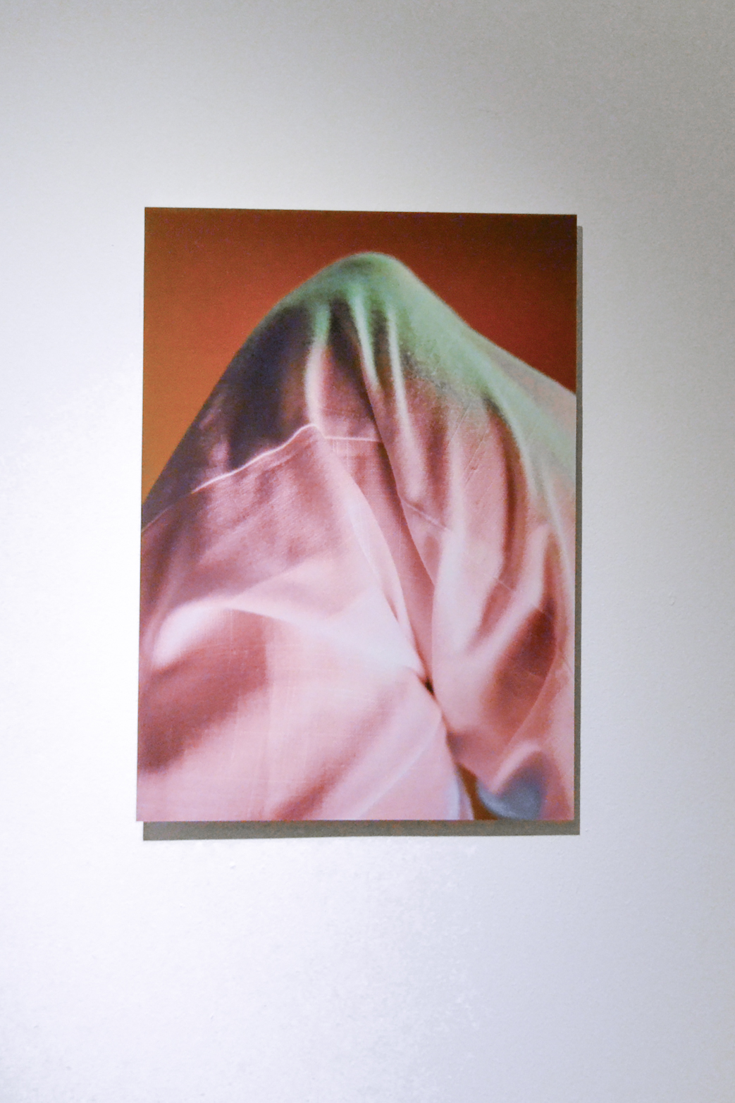 Ilona Sagar, (Untitled) from Soft Addiction, 2014. C-type print on aluminum.