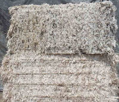 Groundwood Flyleaf Shavings w/ Hot Melt Glue