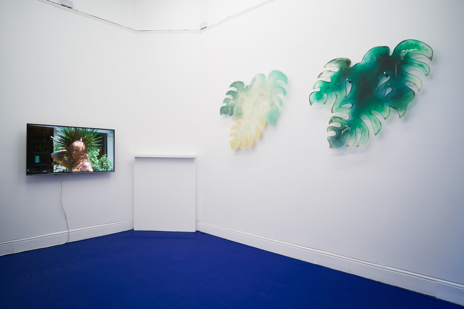 Tropical Hangover, Installation view with works by Laure Prouvost and Zuzanna Czebatul. Tenderpixel.