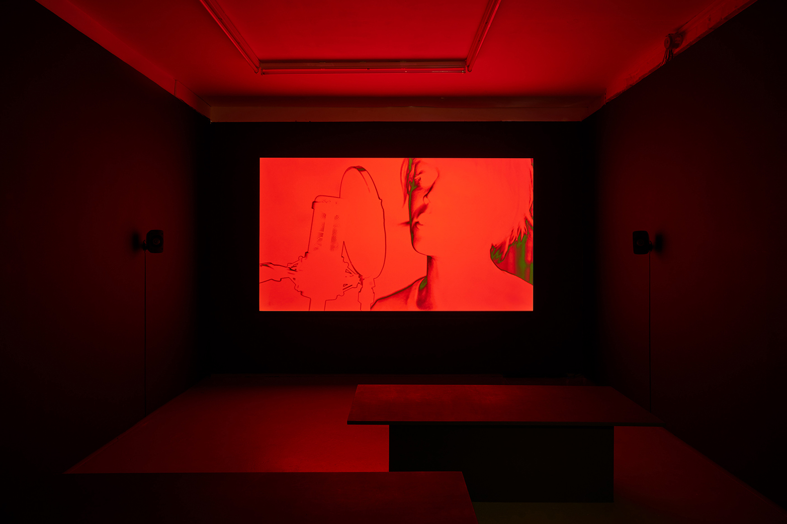 David Ferrando Giraut, The Accursed Stare, 2017. Installation view, Tenderpixel. Digital animation with 5.1 sound. 35 mins.