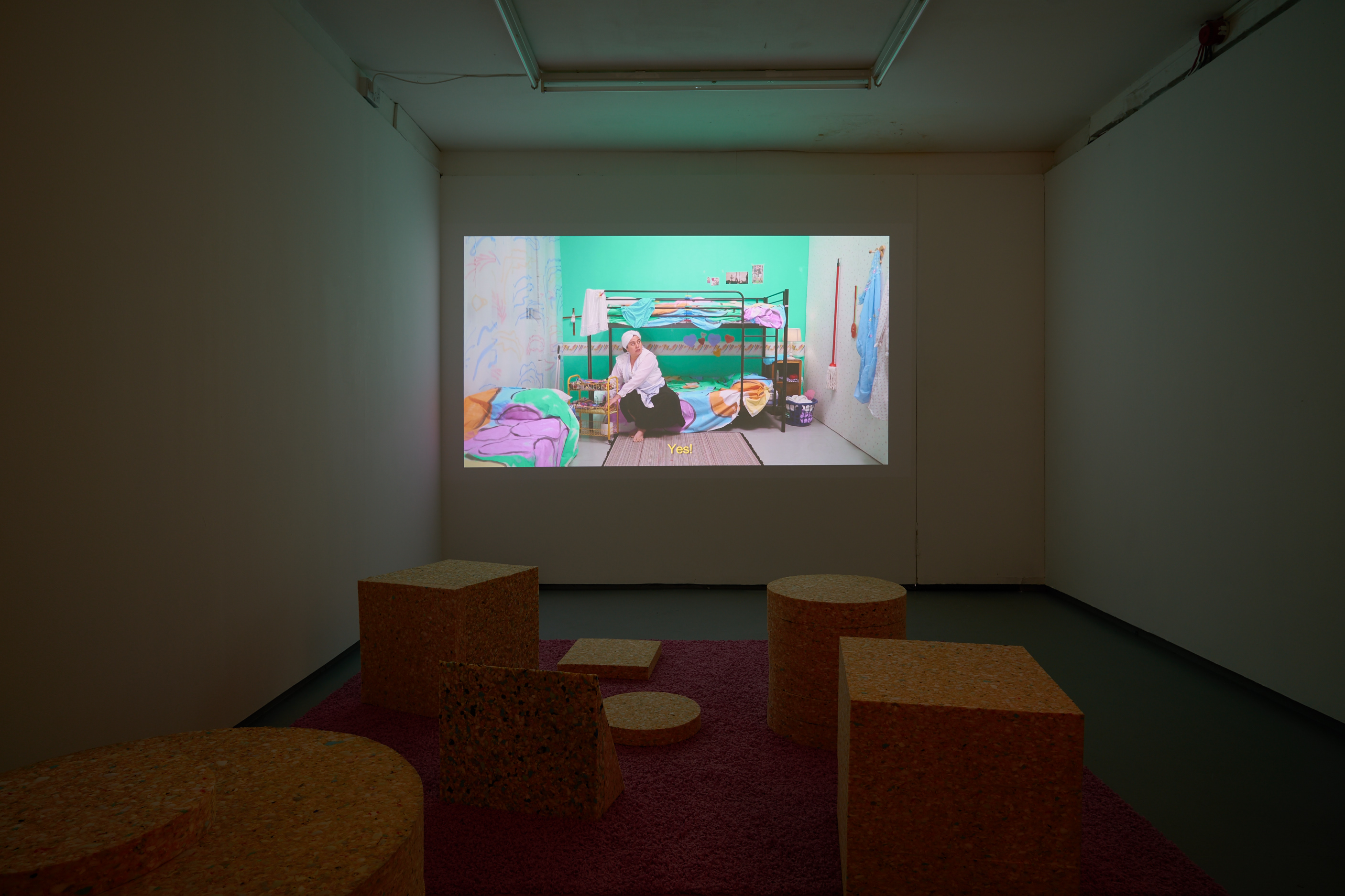CONGLOMERATE, Installation view with still form Desde el Jardin directed by Sol Calero and Dafna Maimon, Tenderpixel, 2017.