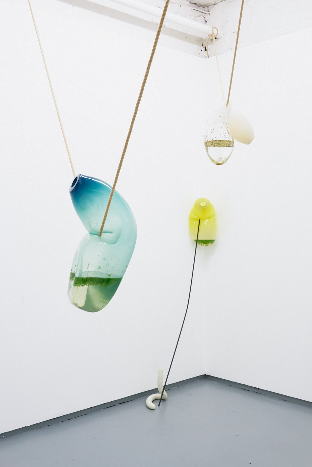 Julia Crabtree and William Evans, Clenched, 2018, Glass, uranium glass, pond life, rope