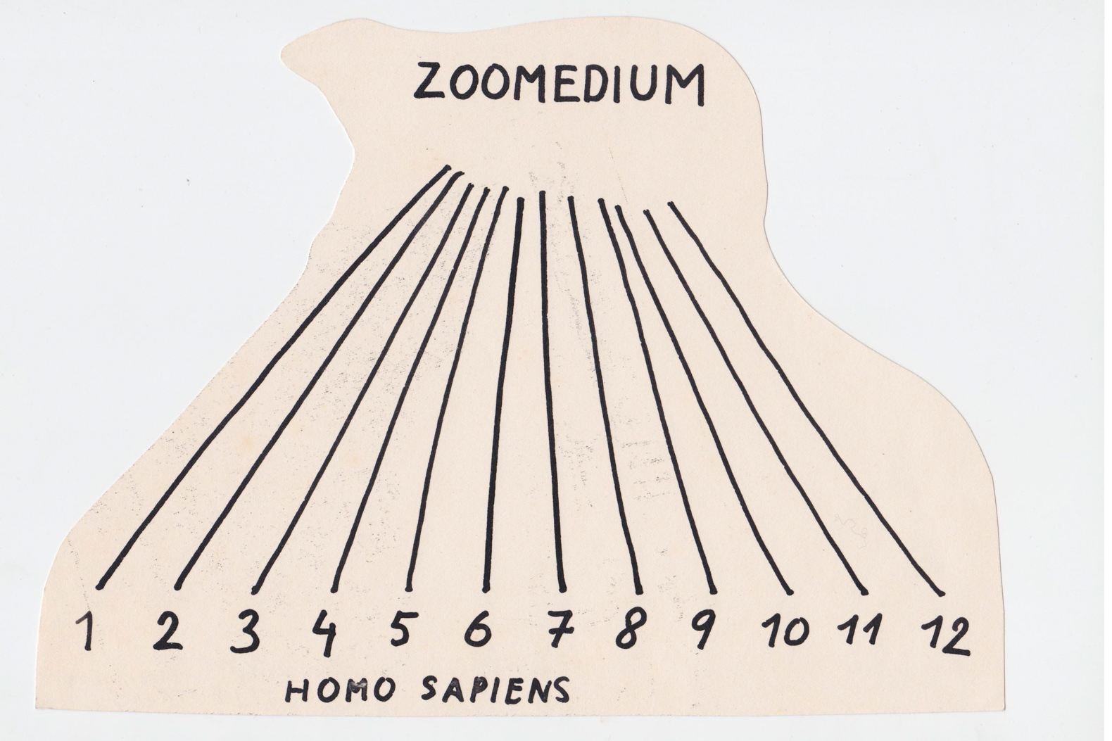 Peter Bartoš, Zoomedium, 1970's