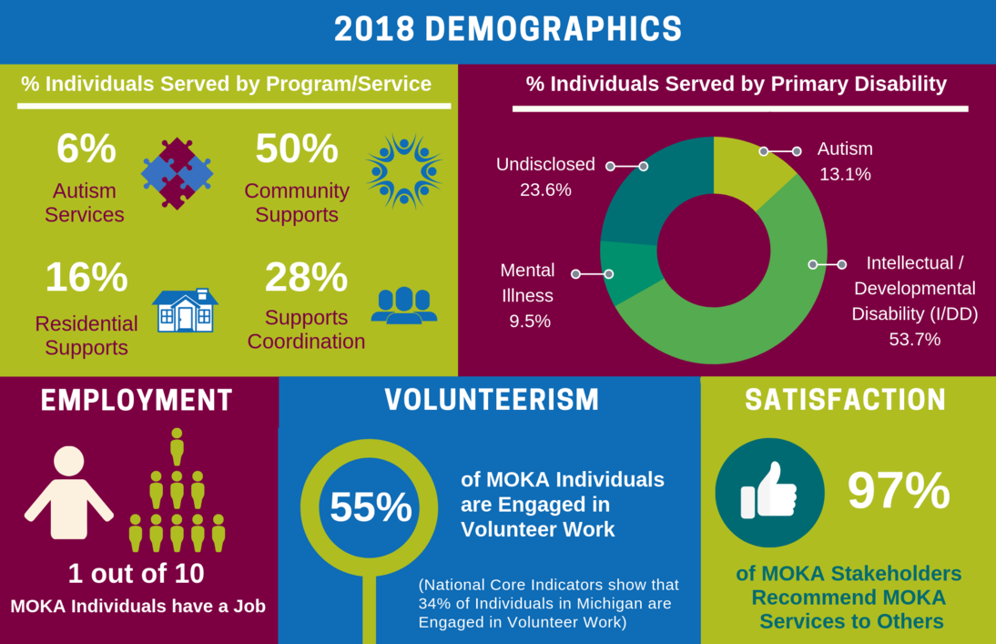 Download a larger image of the 2017 Demographics infographic