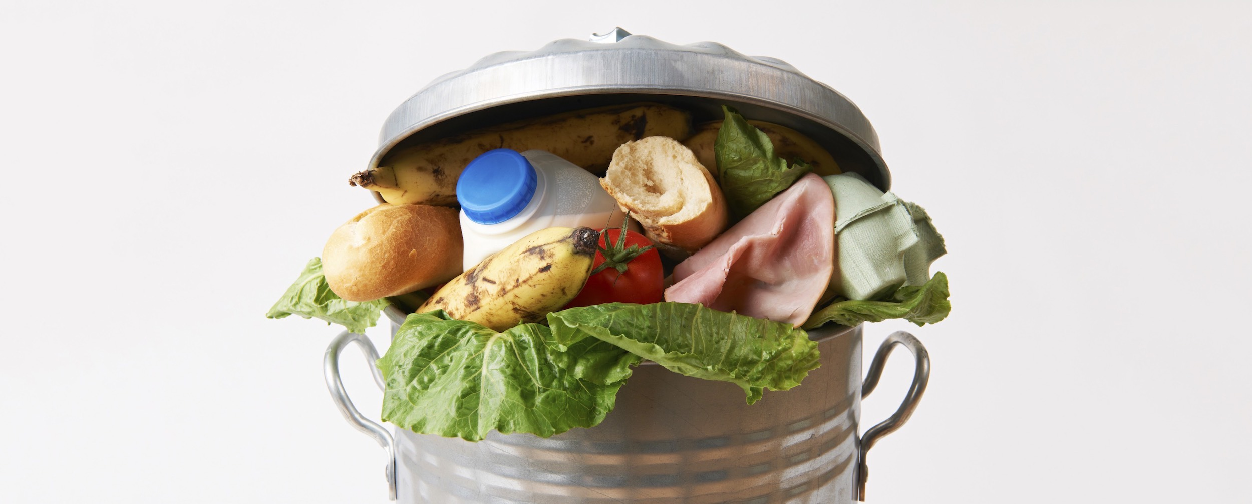 Food Waste Header