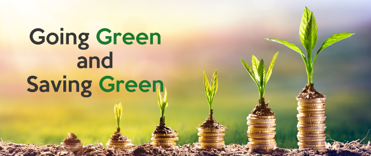 Going Green and Saving Green blog header image
