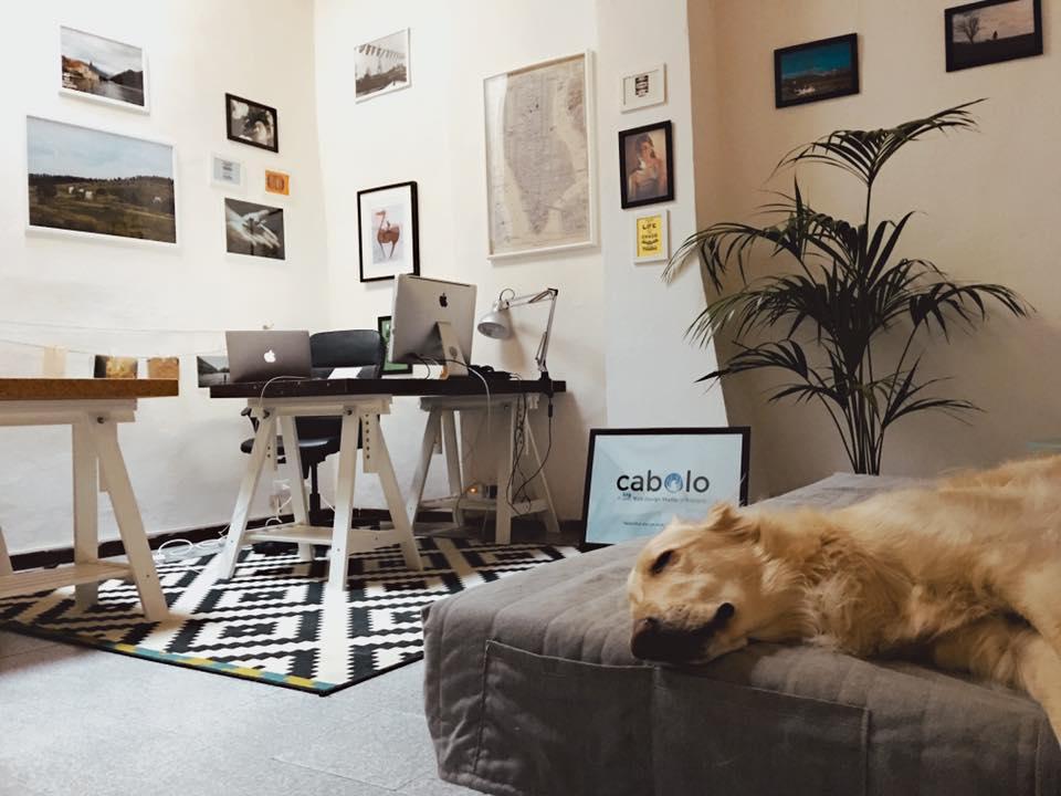 Lo studio di Bologna di Cabolo