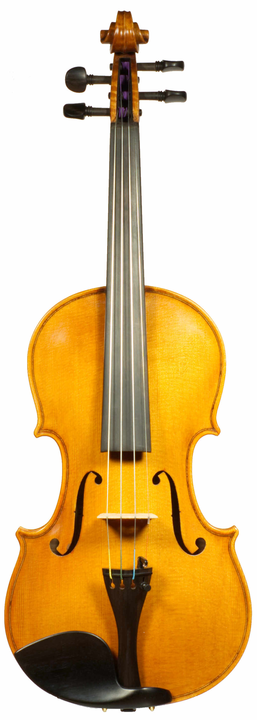 Samuel Shen SV800 violin