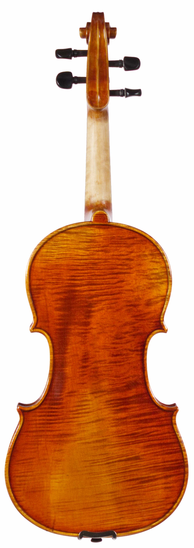 Parola NP10 violin