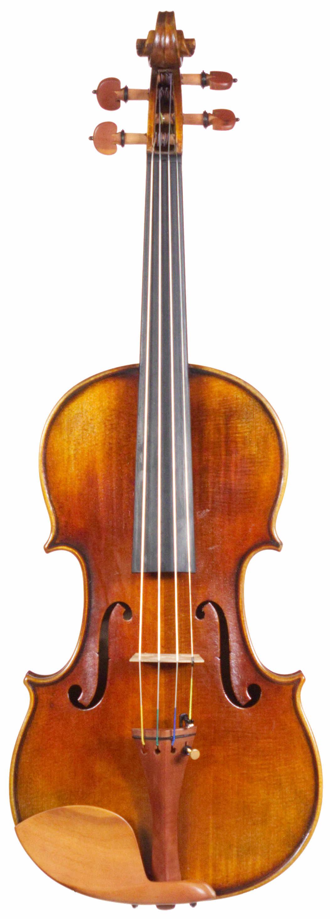 Cedar Music D Model