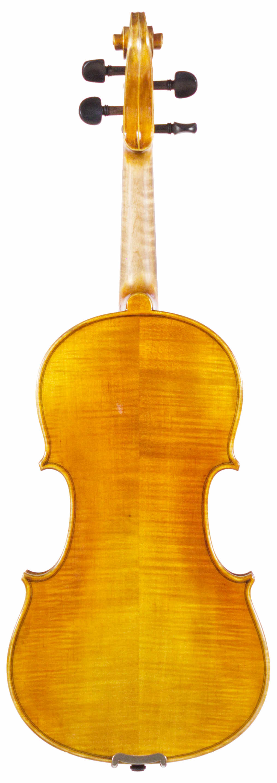 Novizio violin