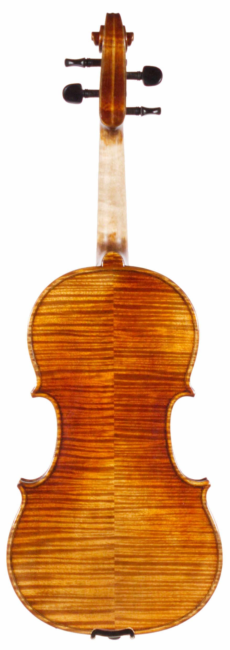 Parola NP15N violin