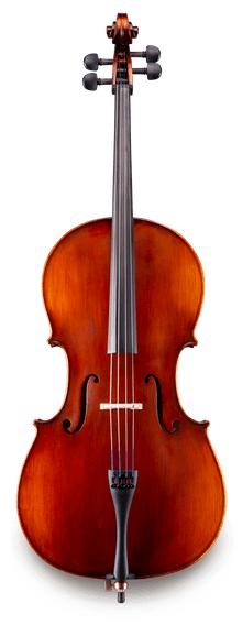 Eastman VC95 Cello