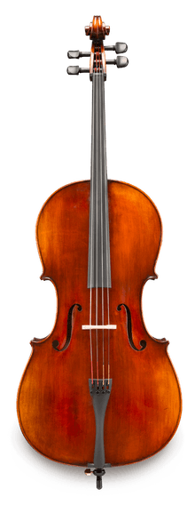 Eastman VC305 Cello