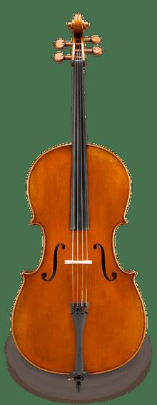 Eastman Lombardi VC502 Cello