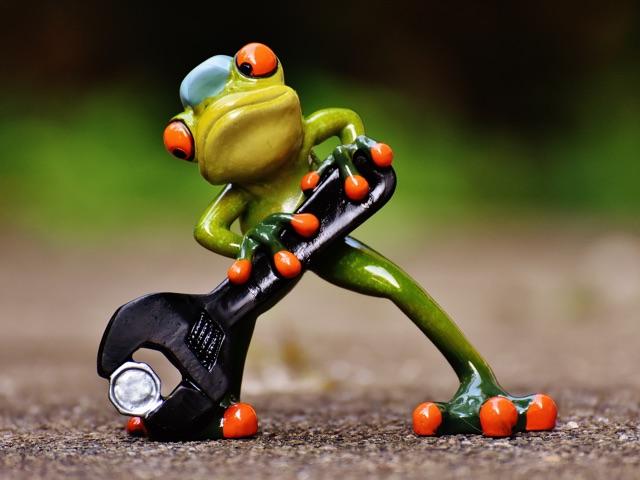 handyman frog