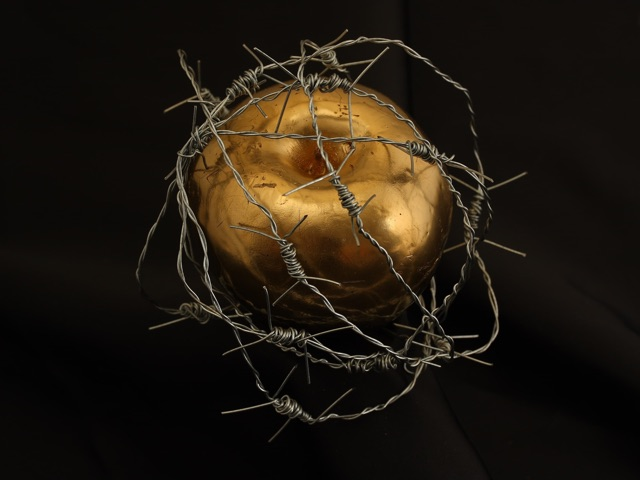 apple in barbed tangles