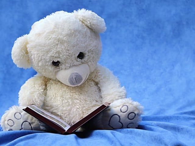 a bear reading
