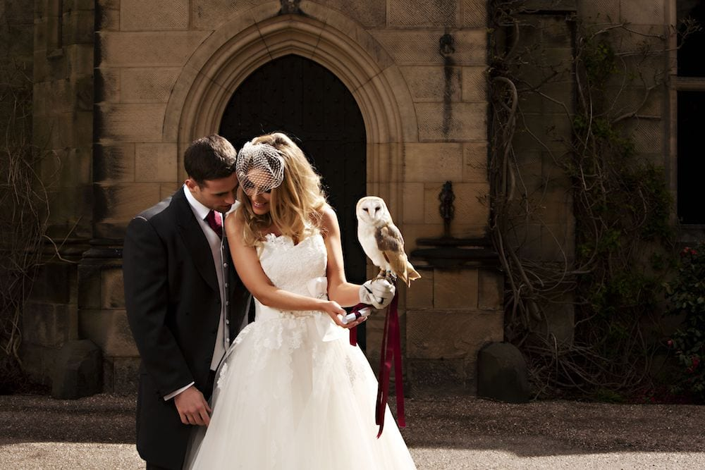 Owl at a wedding on brides hand