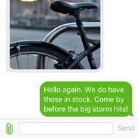 Inbound Business SMS