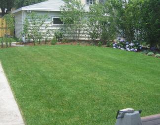 Exceptionnel Lawn Maintenance