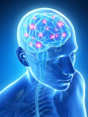 Functional Neurology Genetic Optimization