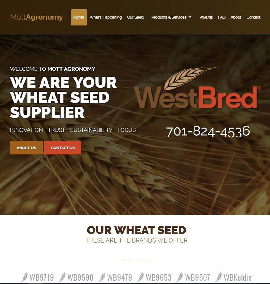 wheat seed website