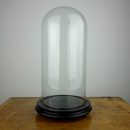 Antique glass dome -E-