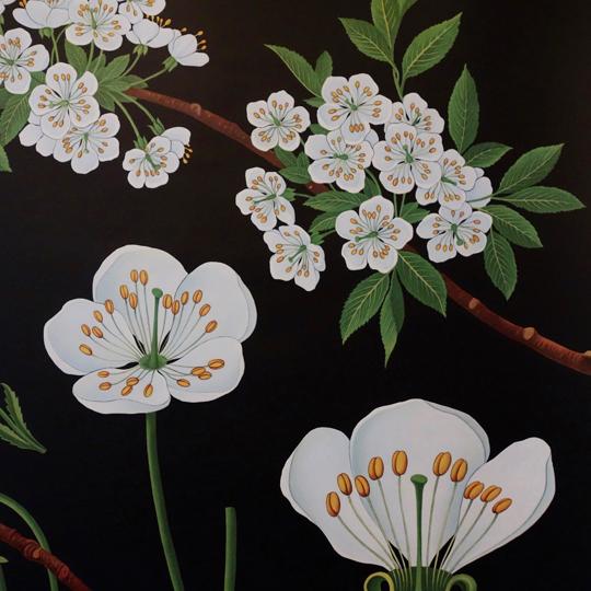 Botanical Wall Chart- Cherry