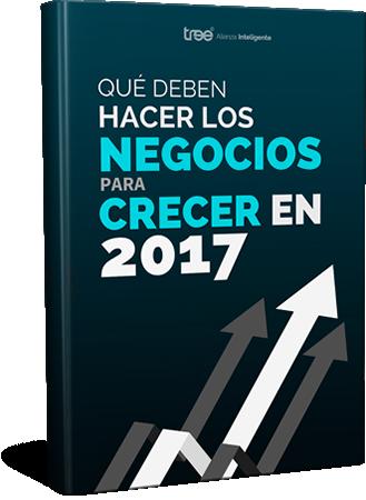 Ebook - Qué los Negocios Deben Hacer para Crecer en 2017.