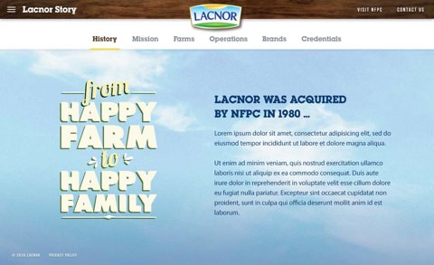 Lacnor website on desktop