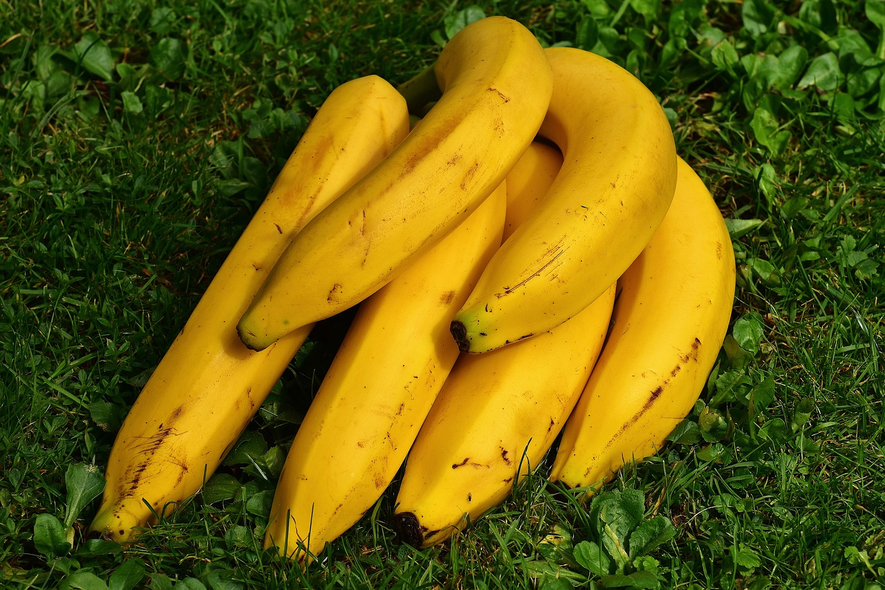 A bunch of bananas