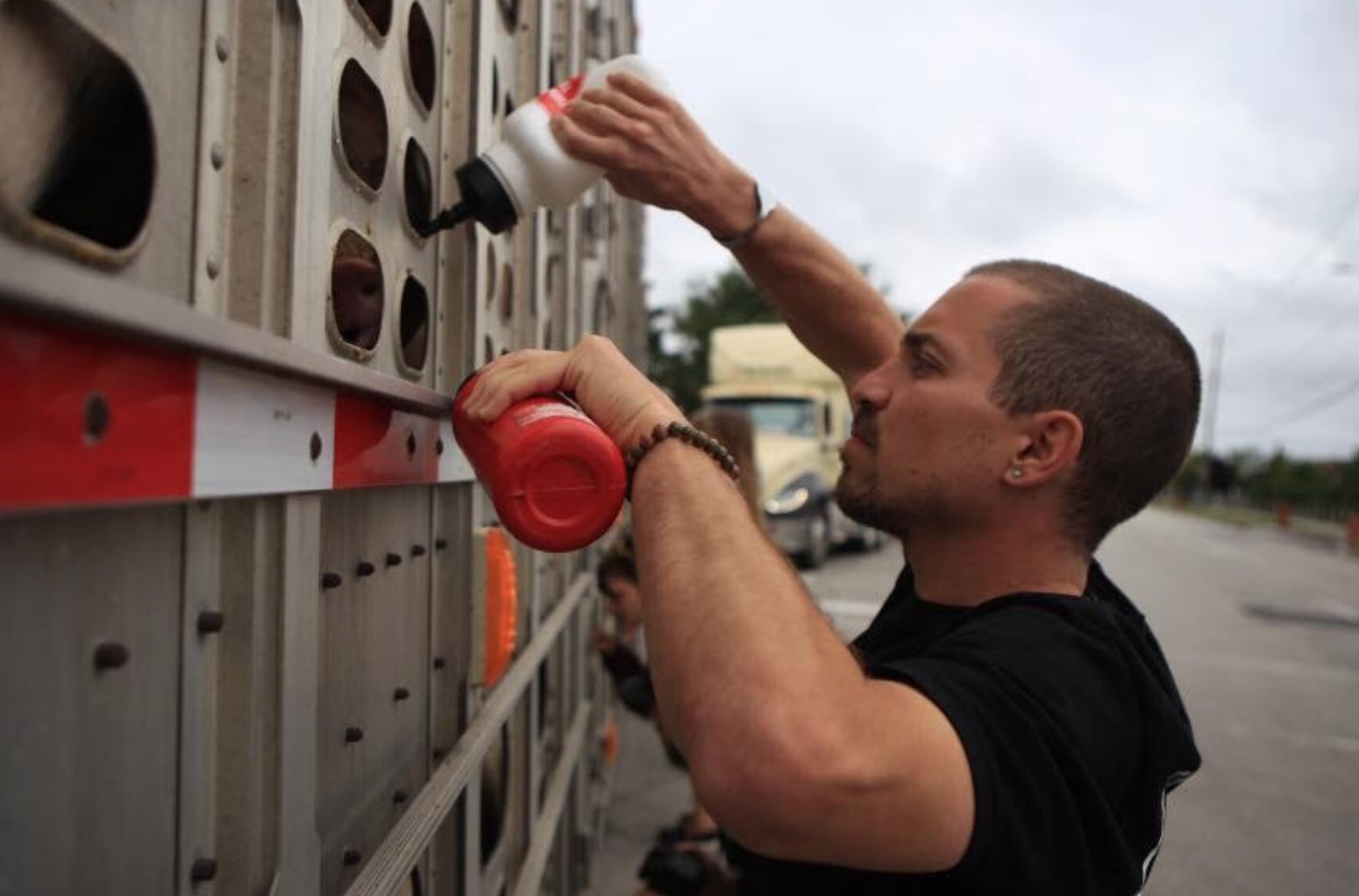 Joshua Entis gives water to pigs